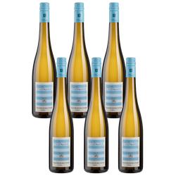 6er-Paket Wittmann Grauer Burgunder - Wittmann - Weinpakete