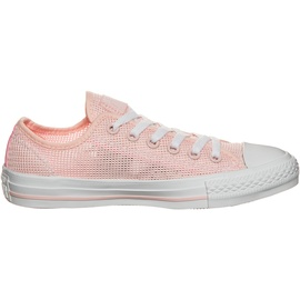 Converse Chuck Taylor All Star Ox rose/ white-rose, 39.5