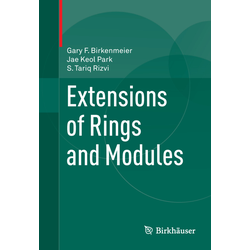 Extensions of Rings and Modules als Buch von Gary F. Birkenmeier/ Jae Keol Park/ S Tariq Rizvi
