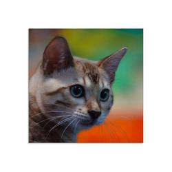 Artland Glasbild Weiße Bengalkatze, Haustiere (1 Stück) 20 cm x 20 cm x 1,1 cm
