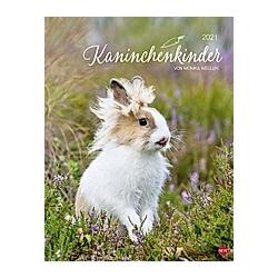 Kaninchenkinder 2021