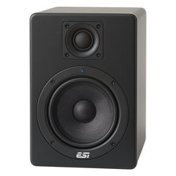 ESI Aktiv 05 Studiomonitor