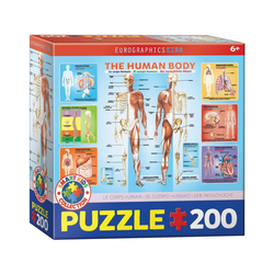 EUROGRAPHICS Puzzle Der menschliche Körper 200 Teile Puzzle, Puzzleteile bunt