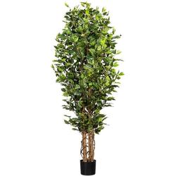 Kunstbaum Ficus Benjamini Ficus Benjamini, Creativ green, Höhe 180 cm