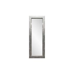 Spiegelprofi Rahmenspiegel Andrea in Aluoptik, 60 x 160 cm
