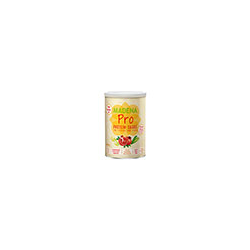 MADENA Pro Protein-Shake classic vegan Pulver 500 g
