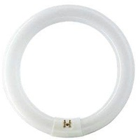 Philips Master TL-E Circular Super 80 40W/840 G10q