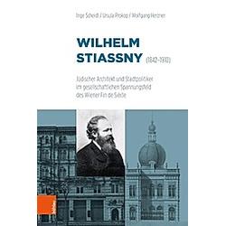 Wilhelm Stiassny (1842-1910). Ursula Prokop  Wolfgang Herzner  Inge Scheidl  - Buch
