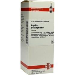ANGELICA ARCHANGELICA Urtinktur D 1 50 ml