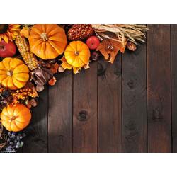 Platzset, Tischsets I Platzsets - Herbstdeko - Herbstliches Dekor 2 - 12 Stück aus hochwertigem Papier 44 x 32 cm, Tischsetmacher, (12-St)