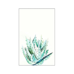 KOMAR XXL Poster Aloe Watercolor bunt