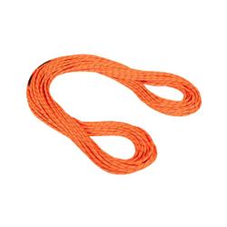 Mammut - 8.0 Alpine Dry Rope  - Kletterseile - Größe: 50 m