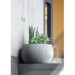 Prosperplast Blumentopf Beton Bowl (1 Stück), Ø48cm x 30cm
