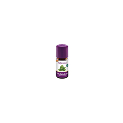 PFEFFERMINZE Öl Bio 5 ml