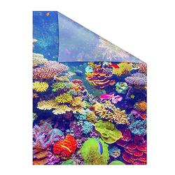Fensterfolie selbstklebend, Sichtschutz, Aquarium - Bunt Fensterdeko bunt Gr. 50 x 50