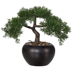 Kunstbonsai Bonsai Zeder Bonsai, Creativ green, Höhe 26 cm