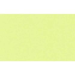 Tonpapier 130g/qm A4 VE=100 Blatt apfelgrün
