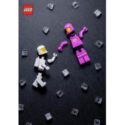 LEGO Minifigure Journal