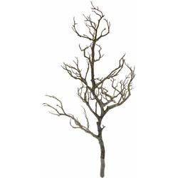 Kunstpflanze Deko-Ast, I.GE.A., Höhe 80 cm
