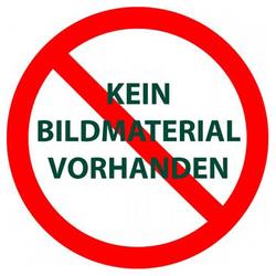 """KGT Rückwandfenster für Gerätehaus """"Elbe"""",silber,"""