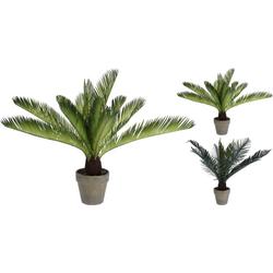 Kunstpflanze PALME(DH 12x11 cm)