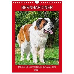 Bernhardiner - Mit dem St. Bernhardshund durch das Jahr (Wandkalender 2021 DIN A4 hoch)