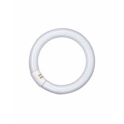 Osram L 40 W/865 C daylight - EEK: A