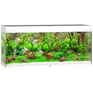 JUWEL AQUARIEN Aquarium Rio 240 LED, B/T/H: 121/41