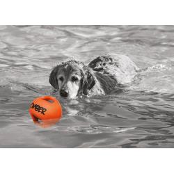 Bomber Hundespielzeug BOMBER orange