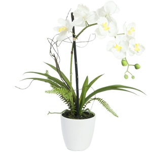 EUROPALMS Orchideen-Arrangement 1, künstlich | Orchidee im Dekotopf