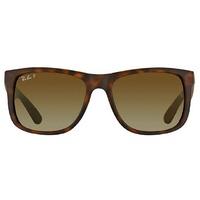 55mm matte havana / brown gradient