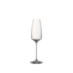Rosenthal Champagnerglas TAC o2 Glatt Champagner, Kristallglas
