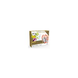 TRMX-4 Kräuterpflaster Detox Relax Recover 10 St