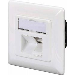 Assmann Electr. Netzwerkdose Kat.6A DN-9008-1