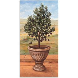 Artland Wandbild Olivenbaum, Pflanzen (1 Stück) 75 cm x 150 cm