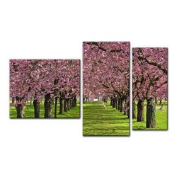 Bilderdepot24 Leinwandbild, Leinwandbild - Kirschblüten 130 cm x 80 cm