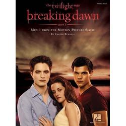 Twilight - Breaking Dawn Piano Solo. Pt.1