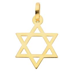Adelia´s Kettenanhänger 585 Gold Anhänger Davidstern