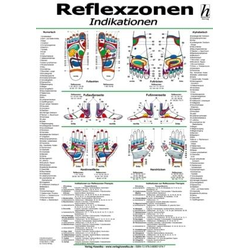Reflexzonen-Therapie Mini-Poster - Indikationen DIN A4
