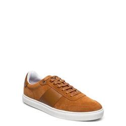Ted Baker Cobbol Niedrige Sneaker Orange TED BAKER Orange 42,43,45,46