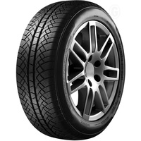 Fortuna Winter 2 195/65 R15 91T