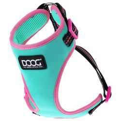 DOOG Neon Geschirr Rin Tin Tin green/pink, Größe: M