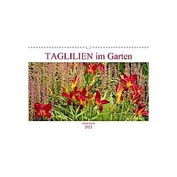 Taglilien im Garten (Wandkalender 2021 DIN A3 quer)