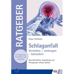 Schlaganfall als Buch von Holger Grötzbach