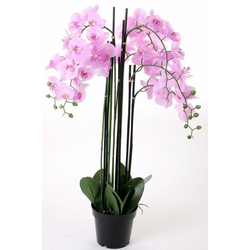 Kunstorchidee Orchidee XXL, Höhe 109 cm rosa