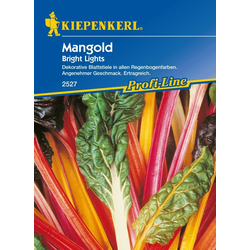 Kiepenkerl Mangold Bright Lights Beta vulgaris var. vulgaris, Inhalt: ca. 50 Pflanzen