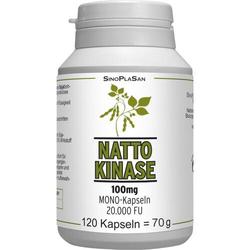 NATTOKINASE 100 mg Mono 20.000 FU Kapseln 120 St