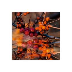 Artland Glasbild Rote Beeren - Wildbeeren, Pflanzen (1 Stück) 20 cm x 20 cm x 1,1 cm