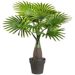 Kunstpalme Palme Mini Palme, Creativ green, Höhe 45 cm, im Kunststofftopf