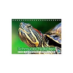 Schmuckschildkröten: Schmucke Reptilien (Tischkalender 2021 DIN A5 quer)